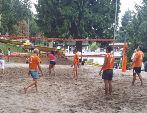 Zocca, beach volley provinciale